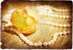 Tulipano e perle gialli fotografie stock libere da diritti