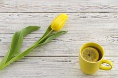 Tulipano e tazza gialli di tè Fotografia Stock