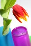 Tulipano e vetro fotografia stock libera da diritti