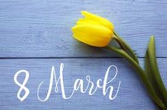Tulipano giallo su un fondo di legno blu per la Giornata internazionale della donna dell'8 marzo con lo spazio della copia Immagini Stock Libere da Diritti