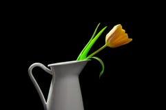 Tulipano giallo in un vaso fotografia stock libera da diritti