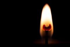 Tulipano nella fiamma Fotografia Stock