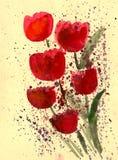Tulipano rosso verniciato in acquerello Immagini Stock