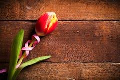 Tulipano su un fondo di legno Immagine Stock