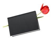 Tulipanowa kwiat książka Obraz Stock