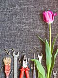 Tulipanowi i różnorodni narzędzia - muśnięcie, cążki, wyrwanie, śrubokręt jest na szorstkiej tkaninie Obraz Stock