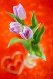Tulipanowi wiosna kwiaty w czerwonym błyskotania tle Zdjęcia Royalty Free