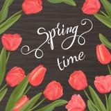 Tulipanu błyszczący tło i wiosny literowanie Obrazy Royalty Free
