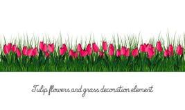 Tulipanu i trawy dekoraci element zdjęcia stock