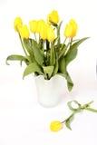 tulipanu kolor żółty obraz royalty free