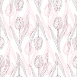 Tulipanu wzór Zdjęcia Royalty Free