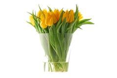 tulipany żółte Fotografia Stock