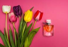 Tulipany i pachnidło na różowym tle obraz stock