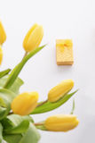 Tulipany i prezent Fotografia Stock