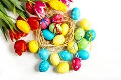 Tulipany i Wielkanocny jajka biały tło Zdjęcia Stock