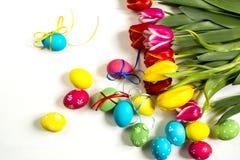 Tulipany i Wielkanocny jajka biały tło Zdjęcie Stock