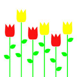 tulipany na żółte Zdjęcie Royalty Free
