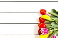 Tulipany na białym stole Zdjęcie Stock
