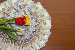 Tulipany na dolarach bill $ 100 Pieniądze dla podróży i odpoczynku, dolary zdjęcie stock
