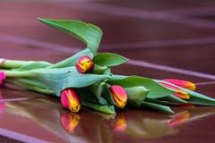 Tulipany na granicie zdjęcia stock