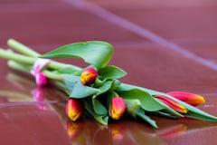 Tulipany na granicie fotografia royalty free