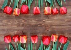 Tulipany na naturalnym drewnianym tle zdjęcie stock