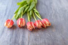 Tulipany na szarym drewno stole Zdjęcie Stock