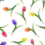 Tulipany simless pattern4-01 Zdjęcia Royalty Free