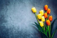 Tulipany umieszczają na drewnianej podłodze obraz royalty free