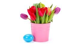 Tulipany w menchiach forsują i błękitny Wielkanocny jajko fotografia stock