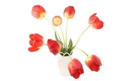 Tulipany w wazie Zdjęcie Stock