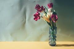 tulipany wazowi ?yje zdjęcia stock