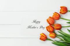 Tulipas alaranjadas e cartão feliz do dia de mães Imagens de Stock Royalty Free