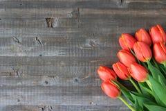 Tulipas alaranjadas indicadas em um fundo de madeira Fotografia de Stock