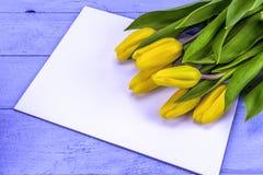 Tulipas amarelas de easter Foto de Stock Royalty Free