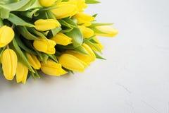 Tulipas amarelas do ramalhete para o dia do ` s da mulher Imagens de Stock Royalty Free