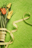 Tulipas de Easter fotos de stock