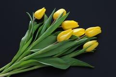 Tulipas amarelas no fundo escuro Foto de Stock Royalty Free