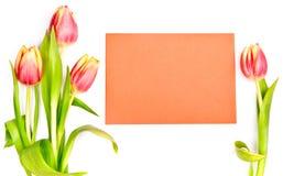 Tulipas ao lado de um envelope alaranjado no fundo branco Imagem de Stock