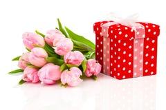 Tulipas bonitas com a caixa de presente vermelha do às bolinhas Imagens de Stock Royalty Free