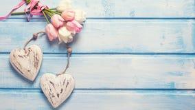 Tulipas brancas e cor-de-rosa da mola e dois corações decorativos no azul Imagem de Stock Royalty Free
