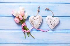 Tulipas brancas e cor-de-rosa da mola e dois corações decorativos no azul Imagens de Stock Royalty Free