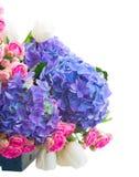 Tulipas brancas, rosas cor-de-rosa e hortensia azul Imagem de Stock