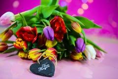 Tulipas coloridas com coração de madeira, dia do ` s das mulheres, dia do ` s da mãe, va Imagens de Stock