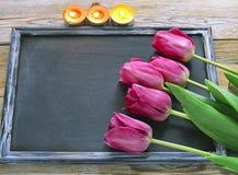 Tulipas coloridas frescas sobre o quadro-negro de madeira para o espaço da cópia e fotos de stock royalty free