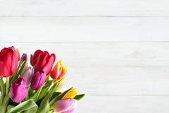 Tulipas coloridas na madeira branca Fotos de Stock Royalty Free