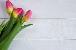 Tulipas coloridas na tabela de madeira Imagem de Stock