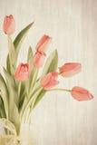 Tulipas com textura e cores silenciado Fotos de Stock Royalty Free