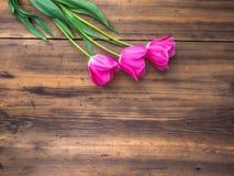 Tulipas cor-de-rosa, arranjo floral no fundo de madeira das placas idosas e um espaço para mensagens Fundo para o ` s da mãe Imagens de Stock