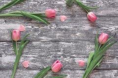 Tulipas cor-de-rosa com corações no fundo de madeira cinzento Vista superior com Foto de Stock Royalty Free
